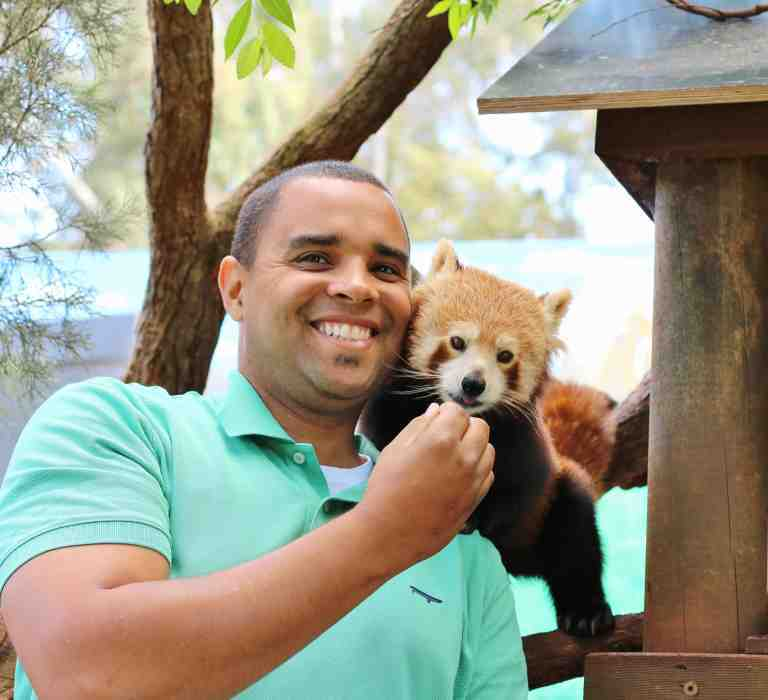 Red Panda Encounter