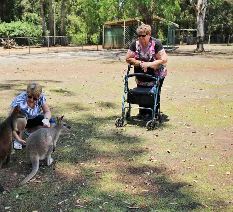Accessibility at Billabong Zoo